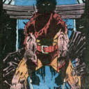 Wolverine in the shadows